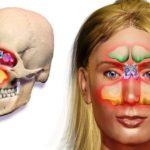 Для чего проводится и что показывает КТ пазух носа?