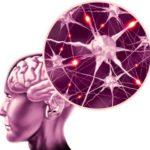 Достоверная диагностика эпилепсии при помощи МРТ