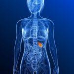 Для чего нужно проведение МРТ-обследования желчного пузыря?